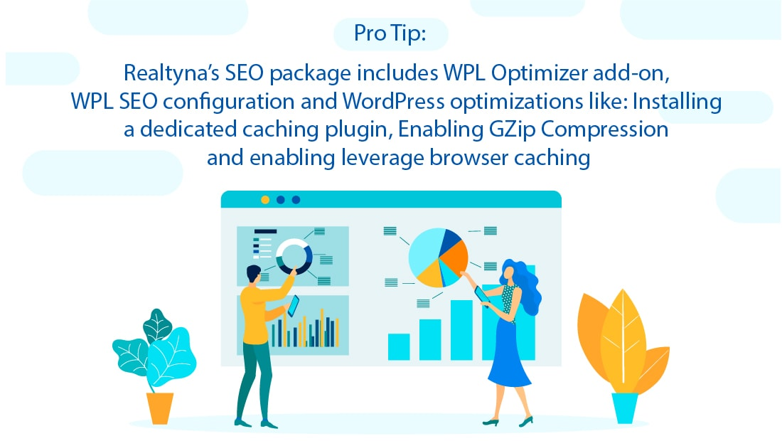 Realtyna's SEO Package