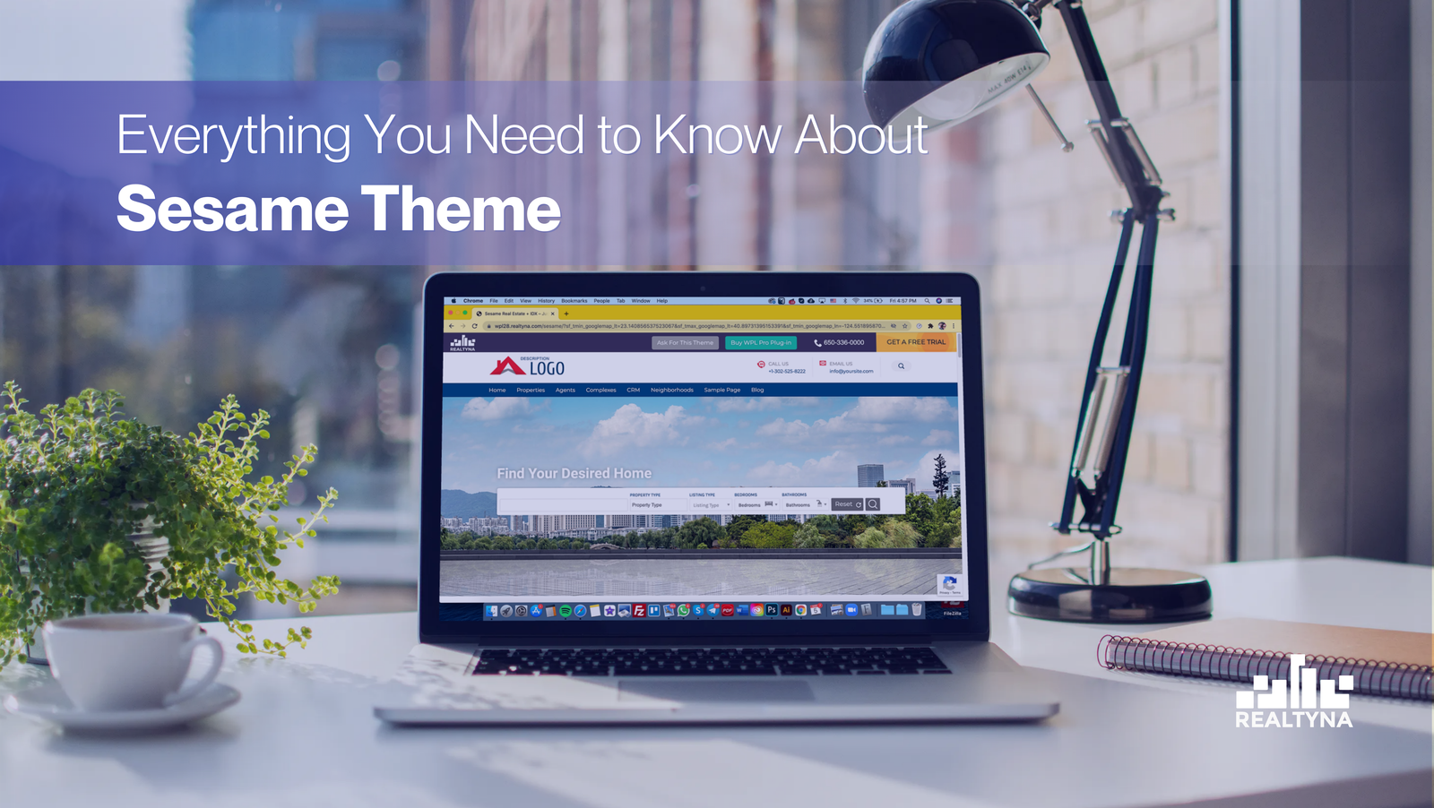Everything You Need To Know About Sesame Theme